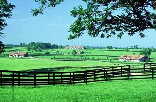 Leatherwood stud llc home for Rural development florida